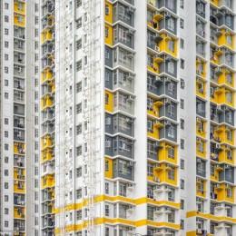 La Cina a Hong Kong  Ed ecco i nuovi alveari