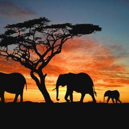 Namibia, tutte le meraviglie  della giovane Africa