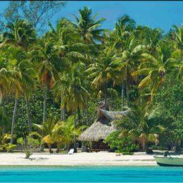 I 5 bungalow del Kia Ora  sperduti nel Pacifico